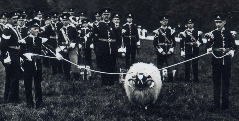 1909 Ram