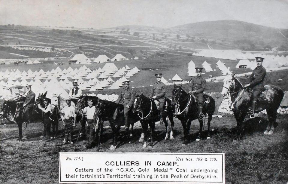 1910 horses