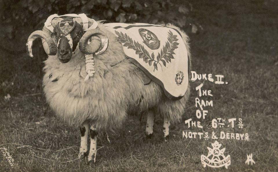ram 1913