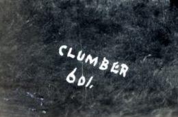 clumber 1913