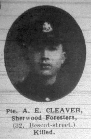 93793 Cleaver
