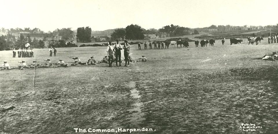 Harpenden Common 1