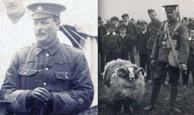 shepherd and Hoult
