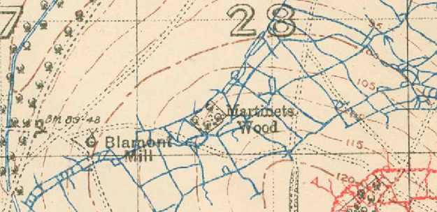Martinets Wood